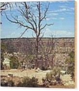 Grand Canyon View 6 Wood Print