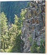 Grand Canyon Walls Lan 183 Wood Print