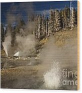 Grand Geyser Group Wood Print