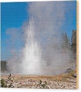 Grand Geyser In Upper Geyser Basin In Yellowstone National Park Wood Print