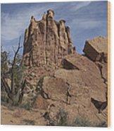 Grand Junction Landscape Wood Print