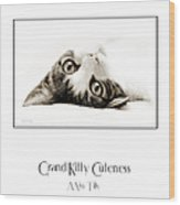 Grand Kitty Cuteness Miss Tilly Poster Wood Print by Andee Design