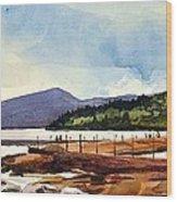 Grand Marais Lighthouses Wood Print