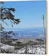 Grand Mesa Co North Side Valley View Wood Print
