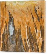 Grand Prismatic Detail Wood Print