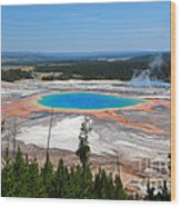 Grand Prismatic Spring From Above Wood Print