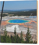 Grand Prismatic Spring From Hillside Wood Print
