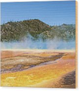 Grand Prismatic Spring - Yellowstone National Park Wood Print