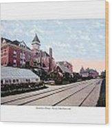 Grand Rapids - Michigan - Michigan Soldiers Home - 1915 Wood Print