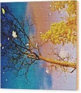 Grand Reflections # 1 Wood Print