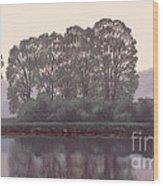 Grand River Sentinels Wood Print