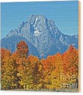 Grand Teton National Park 2 Wood Print