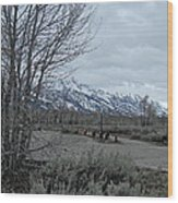 Grand Tetons Landscape Wood Print