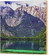 Grand Tetons National Park Painting Wood Print