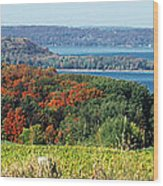 Grand Traverse Winery Lookout Wood Print