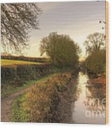 Grand Western Canal At Halberton  Wood Print