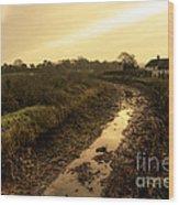 Grand Western Canal Nr Halberton  Wood Print