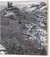 Grandfather Mountain's Linville Peak  Wood Print