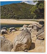 Granite Boulders In Abel Tasman Np New Zealand Wood Print