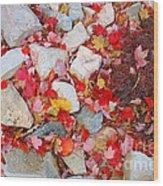 Granite Rocks Among Maple Leaves Wood Print