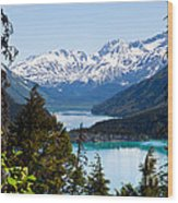 Grant Lake Overlook Wood Print by Chris Heitstuman