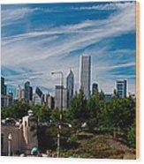 Grant Park Chicago Skyline Panoramic Wood Print