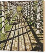 Grape Arbor Wood Print