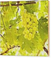 Grape Branch Wood Print
