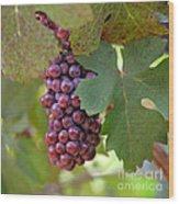 Grape Bunch Wood Print