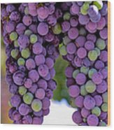 Grape Bunches Portrait Wood Print