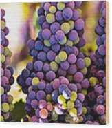 Grape Bunches Wide Wood Print