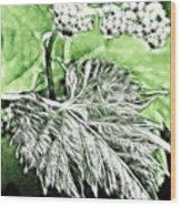 Grape Vine Leaf Wood Print