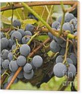 Grape Work Wood Print