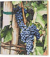 Grapes 1 Wood Print