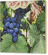 Grapes 3 Wood Print