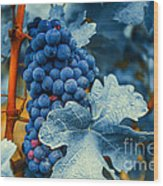 Grapes - Blue  Wood Print by Hannes Cmarits