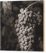 Grapes In Grey 4 Wood Print