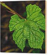 Grapes Of Rath Wood Print by Louis Dallara