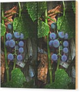 Grapes On The Vine - Gently Cross Your Eyes And Focus On The Middle Image Wood Print