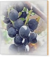 Grapes On The Vine Wood Print by Kathleen Struckle