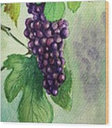 Grapes On The Vine Wood Print by Prashant Shah