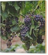 Grapes On Vine Wood Print
