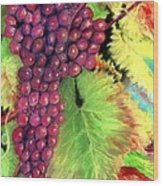 Grapes On Vine Pastel Wood Print