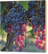 Grapes With Bokeh Wood Print