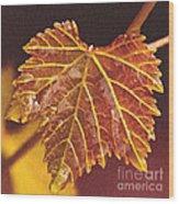 Grapevine In Fall Wood Print