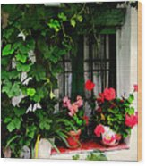 Grapevines And Geraniums Around A Window Wood Print