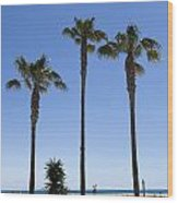 Graphic Image Of Palm Trees Blue Sky At Seaside Wood Print
