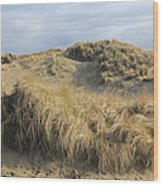 Grass And Sand Dunes Wood Print