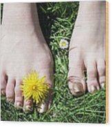 Grass Between My Toes Wood Print by Stephen Norris