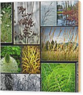 Grass Collage Variety Wood Print